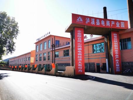 泸溪县电商产业园是泸溪县农产品出村进城的重要窗口